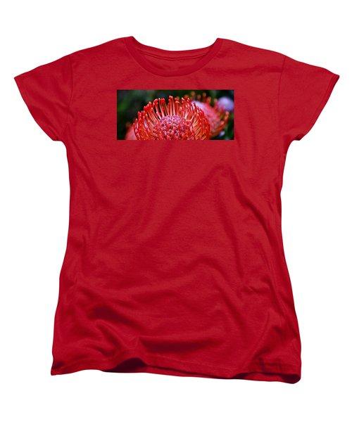 Red  Pincushion Protea Women's T-Shirt (Standard Cut) by Werner Lehmann