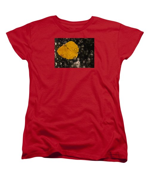 This One Followed Me Home... Women's T-Shirt (Standard Cut) by Craig Szymanski