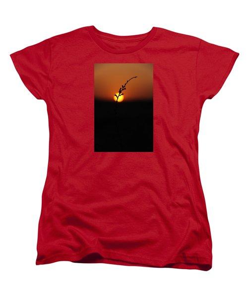 Tumpak Women's T-Shirt (Standard Cut) by Jez C Self