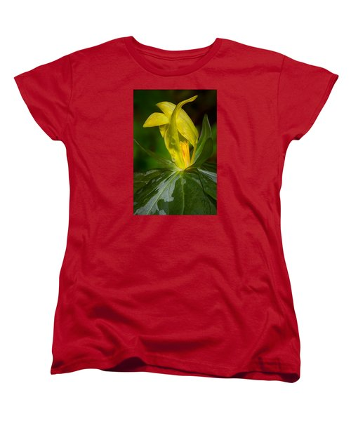 Women's T-Shirt (Standard Cut) featuring the photograph Yellow Trillium by Tyson and Kathy Smith