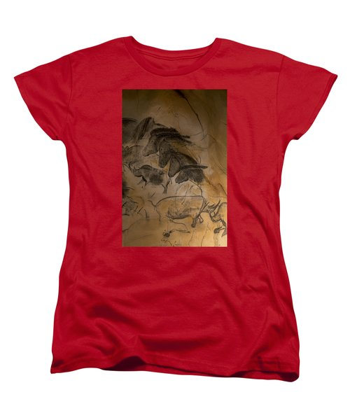 150501p086 Women's T-Shirt (Standard Cut) by Arterra Picture Library
