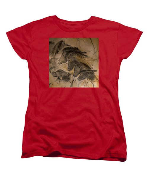 150501p087 Women's T-Shirt (Standard Cut) by Arterra Picture Library
