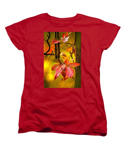 Women's T-Shirt (Standard Cut) featuring the photograph Fall Colors by Eduard Moldoveanu