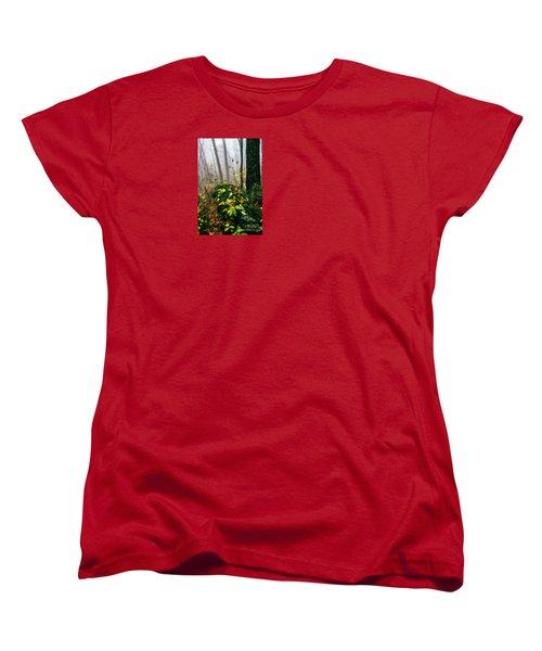 Autumn Monongahela National Forest Women's T-Shirt (Standard Cut) by Thomas R Fletcher