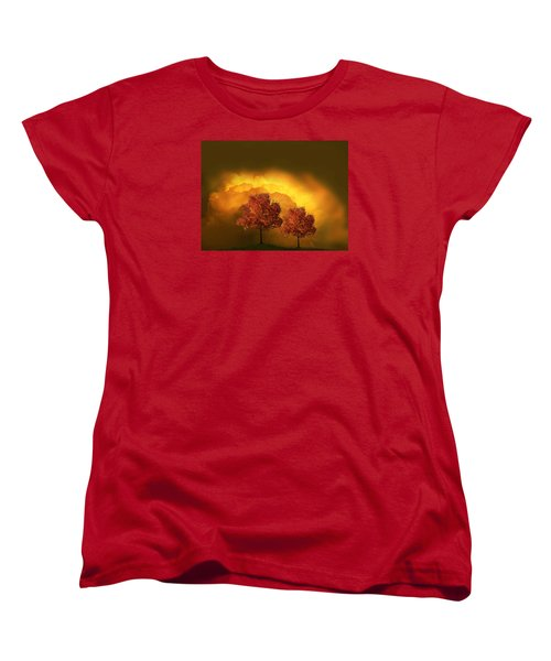 4015 Women's T-Shirt (Standard Cut) by Peter Holme III