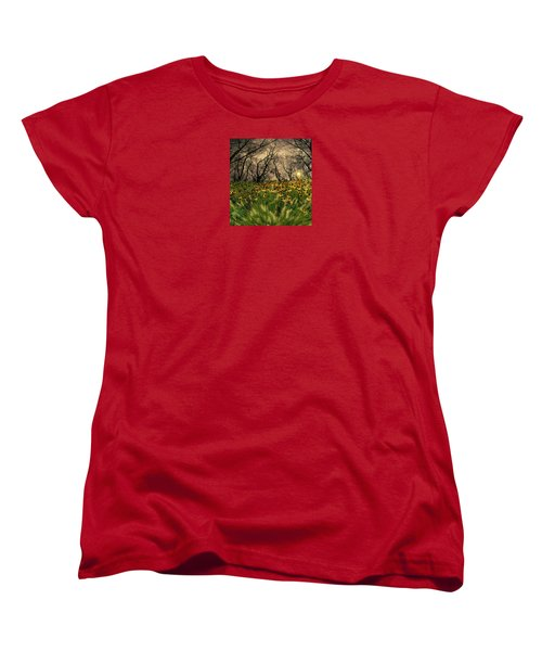 4209 Women's T-Shirt (Standard Cut) by Peter Holme III