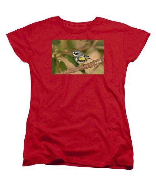 Yellow-rumped Warbler Women's T-Shirt (Standard Cut) by Alan Lenk