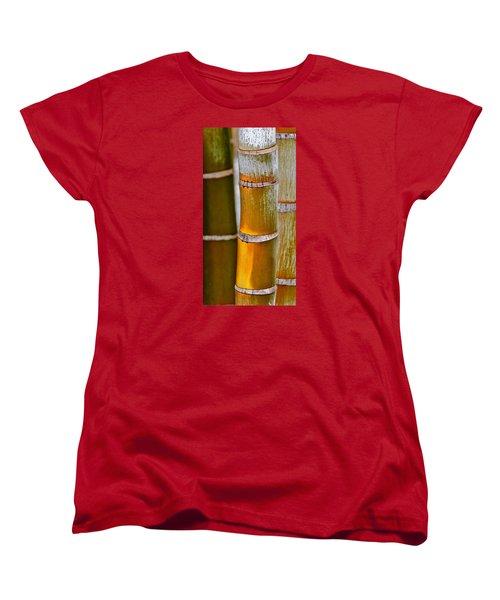 Women's T-Shirt (Standard Cut) featuring the photograph Bamboo Palm by Werner Lehmann