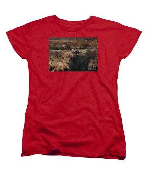 A Beaver's Work Women's T-Shirt (Standard Cut) by Skip Willits