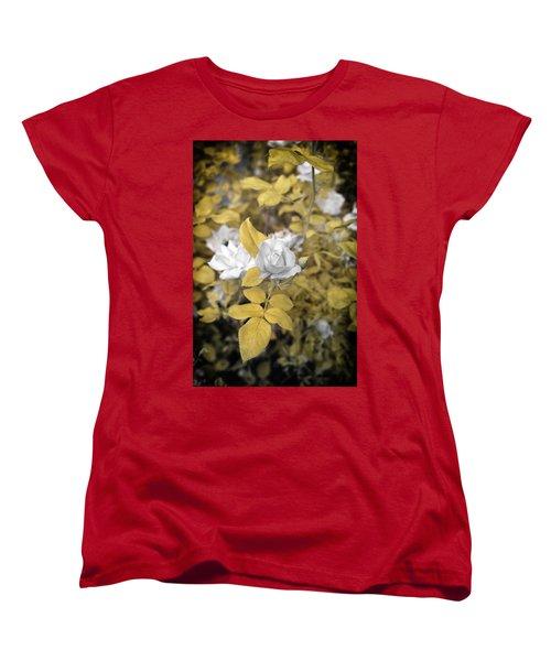 A Day In The Garden Women's T-Shirt (Standard Cut) by Paul Seymour