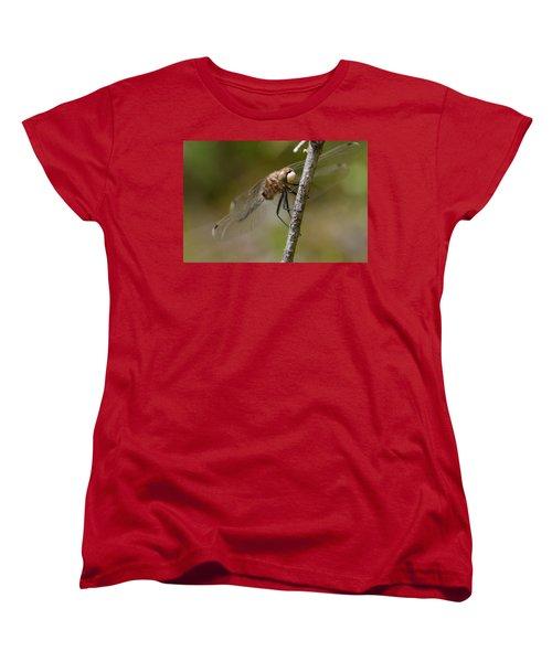 A Rest Women's T-Shirt (Standard Cut) by Janet Rockburn