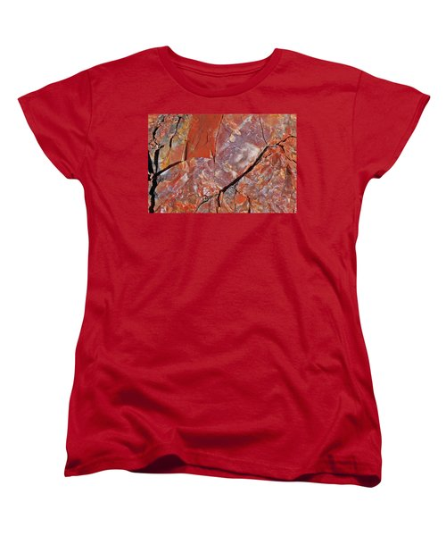 A Slice Of Time Women's T-Shirt (Standard Cut) by Gary Kaylor