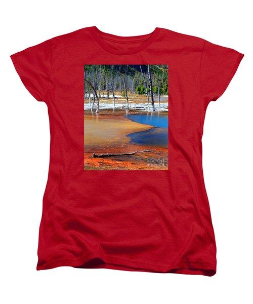 Acid Soup Yellowstone Women's T-Shirt (Standard Cut) by Diane E Berry