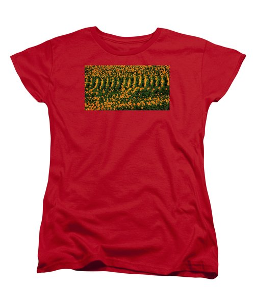 Women's T-Shirt (Standard Cut) featuring the photograph All In A Row by Chris Berry