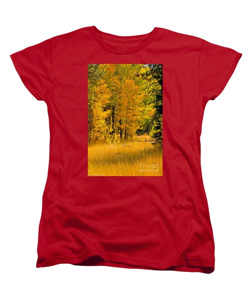 All The Soft Places To Fall Women's T-Shirt (Standard Cut) by Mitch Shindelbower