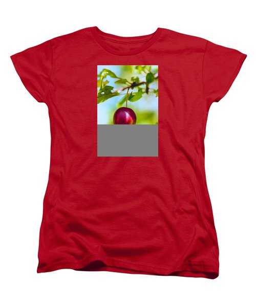 Crab Apple Women's T-Shirt (Standard Cut) by Constantine Gregory