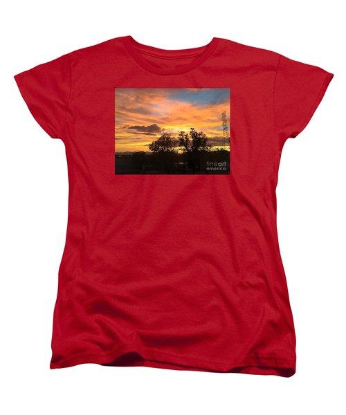 Arizona Awesome Women's T-Shirt (Standard Cut) by Anne Rodkin