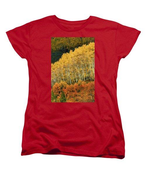 Aspen Waves Women's T-Shirt (Standard Cut) by Dana Sohr