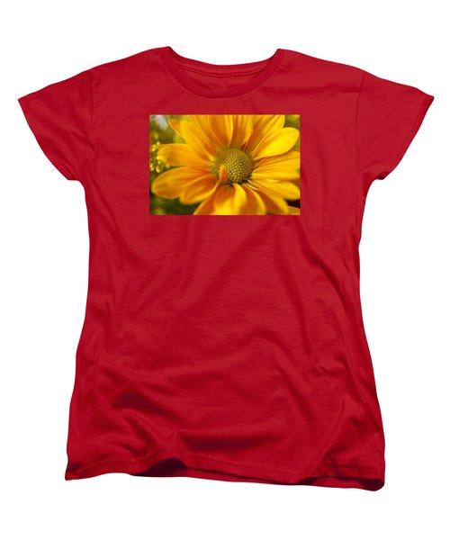 Aster Close Up Women's T-Shirt (Standard Cut) by Andrew Soundarajan