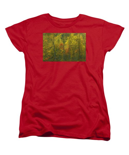 At The Edge Of The Forest Women's T-Shirt (Standard Cut) by Ulrich Burkhalter