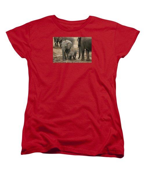 Women's T-Shirt (Standard Cut) featuring the photograph At The Salt Lick 2 by Gary Hall