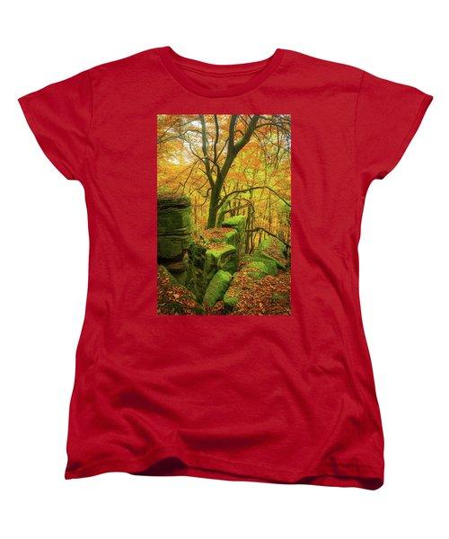 Automnal Glow Women's T-Shirt (Standard Cut)