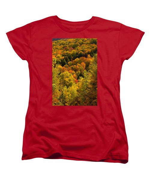 Autumn At Acadia Women's T-Shirt (Standard Cut) by Brent L Ander