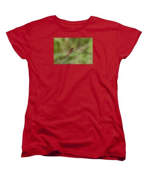 Women's T-Shirt (Standard Cut) featuring the photograph Autumn Meadowhawk by Randy Bodkins