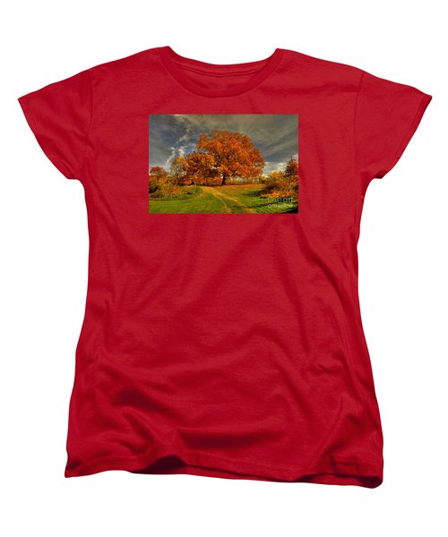 Autumn Picnic On The Hill Women's T-Shirt (Standard Cut) by Lois Bryan