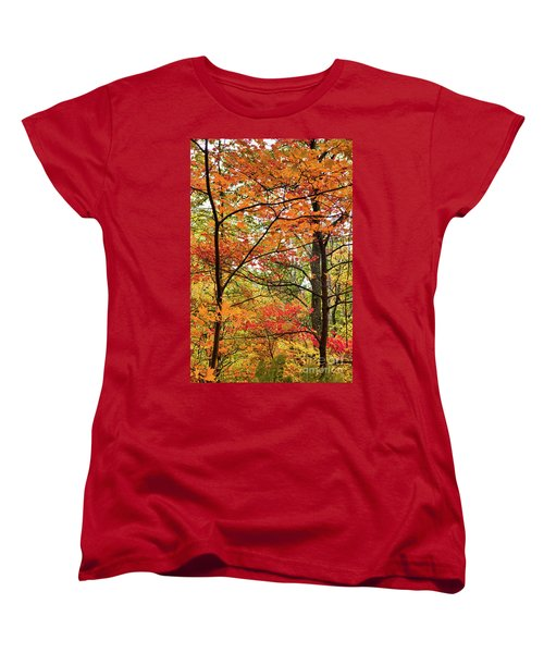 Women's T-Shirt (Standard Cut) featuring the photograph Autumn Splendor Fall Colors Leaves And Trees by Dan Carmichael