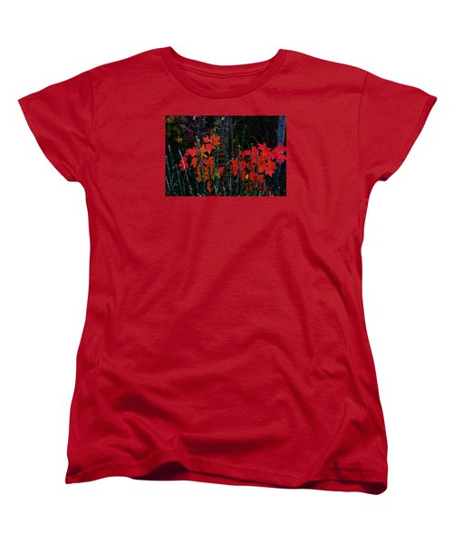 Autumn Women's T-Shirt (Standard Cut) by Steven Clipperton