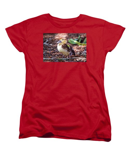 Baby Duck Sitting Women's T-Shirt (Standard Cut) by Stephanie Hayes