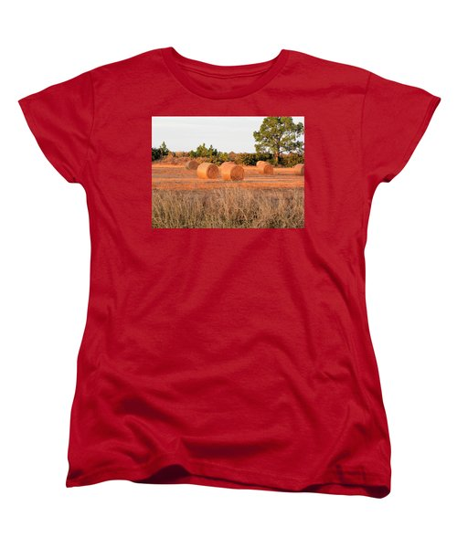 Bales Women's T-Shirt (Standard Cut) by Rosalie Scanlon