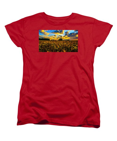 Bean Field Splendor  Women's T-Shirt (Standard Cut) by John Harding