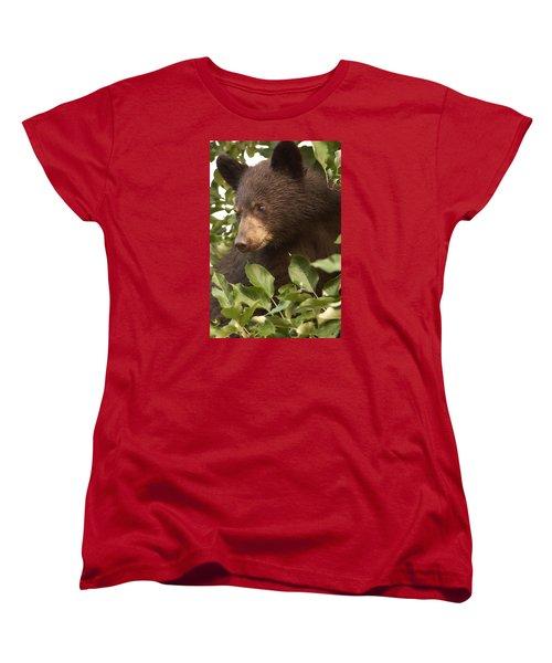 Bear Cub In Apple Tree1 Women's T-Shirt (Standard Cut) by Loni Collins