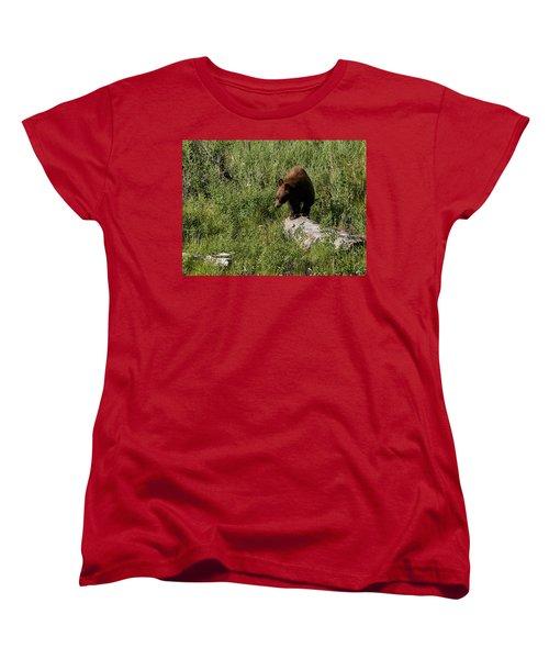 Bear1 Women's T-Shirt (Standard Cut)