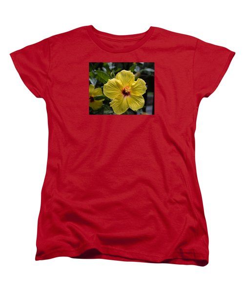 Women's T-Shirt (Standard Cut) featuring the photograph Beautifully Delicate by Arlene Carmel