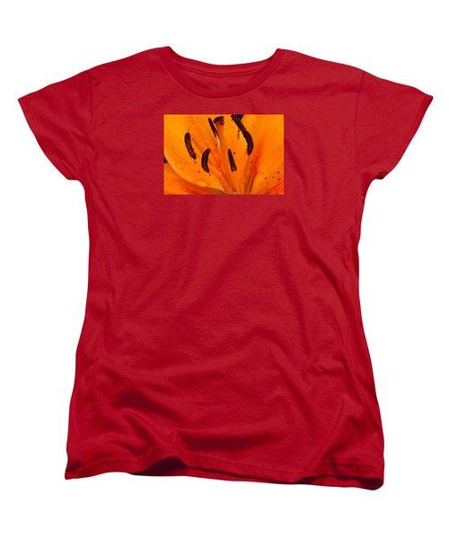 Bedraggled Beauty In Orange Women's T-Shirt (Standard Cut)