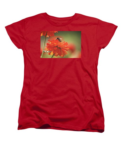 Bee And Flower Iv Women's T-Shirt (Standard Cut) by Donna G Smith