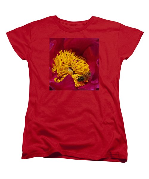 Bee On A Burgundy And Yellow Flower2 Women's T-Shirt (Standard Cut) by John Topman