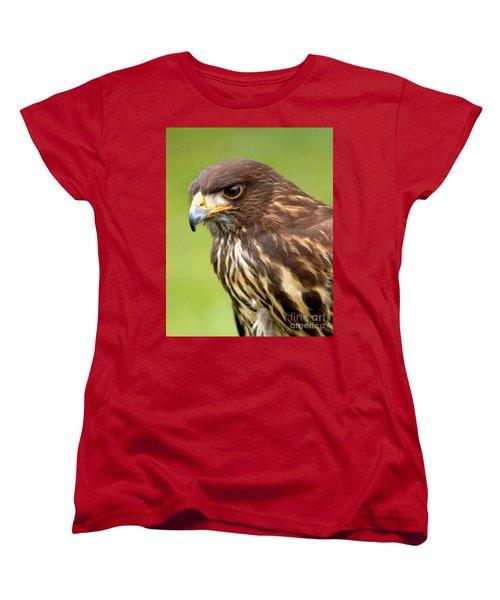 Beware The Predator Women's T-Shirt (Standard Cut) by Stephen Melia