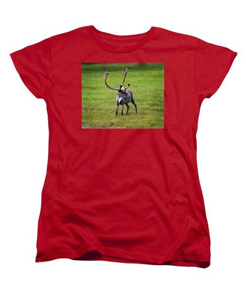 Big Horn Women's T-Shirt (Standard Cut) by Anthony Jones