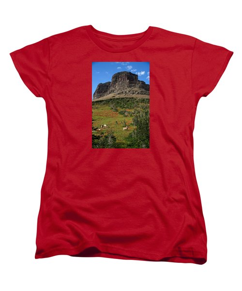 Big Horn Sheep Women's T-Shirt (Standard Cut) by Lawrence Boothby