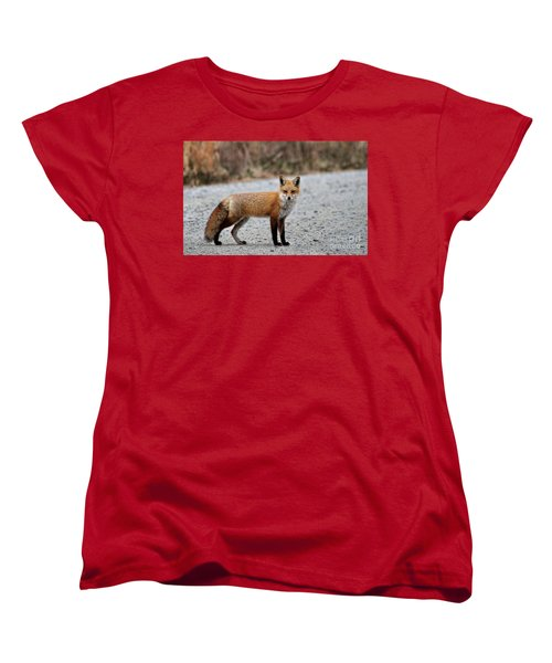 Women's T-Shirt (Standard Cut) featuring the photograph Big Red by Tamera James