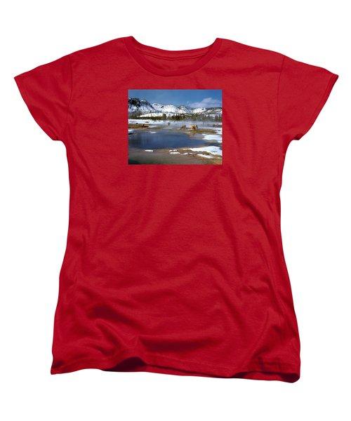 Biscuit Basin Elk Herd Women's T-Shirt (Standard Cut) by Ed  Riche