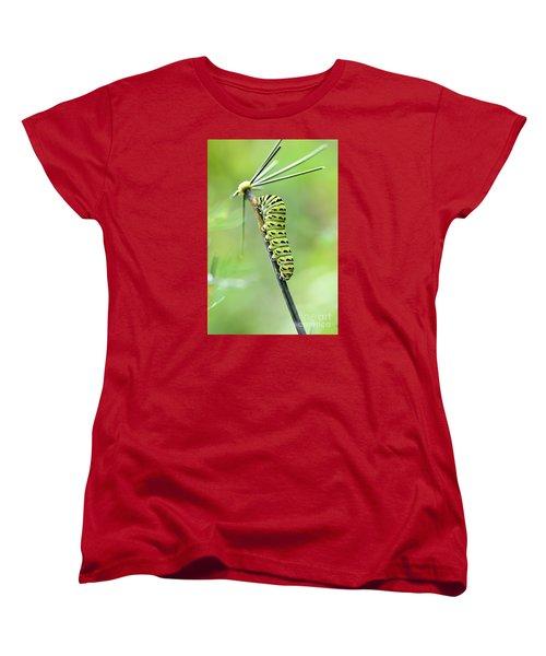 Black Swallowtail Caterpillar Women's T-Shirt (Standard Cut) by Debbie Green