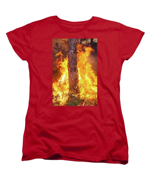 Women's T-Shirt (Standard Cut) featuring the photograph Blazing Pine by Arthur Dodd