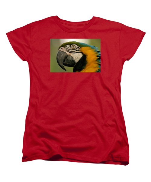 Blue Gold Macaw South America Women's T-Shirt (Standard Cut) by Ralph A  Ledergerber-Photography