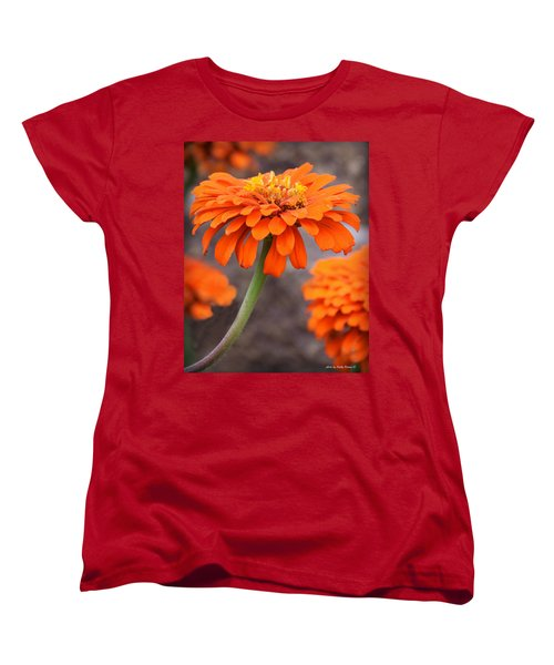Bright And Beautiful Women's T-Shirt (Standard Cut) by Kathy M Krause