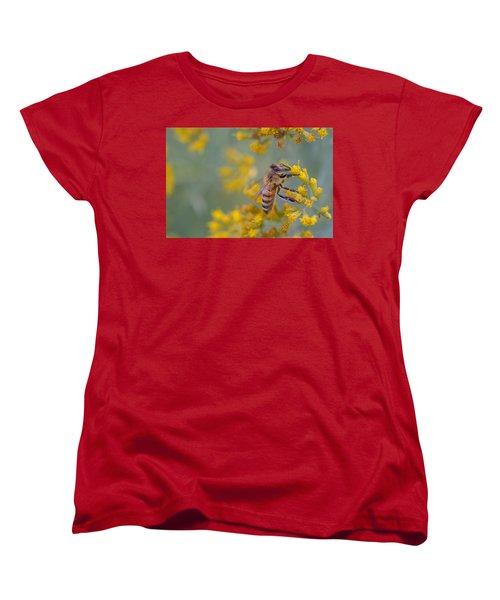Bright Eyed Bee Women's T-Shirt (Standard Cut) by Janet Rockburn